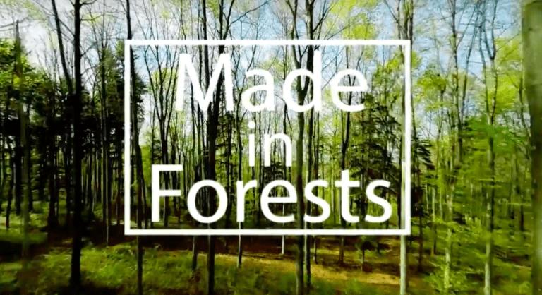 Forests for Fashion – Fashion for Forests: le foreste al servizio della moda e viceversa